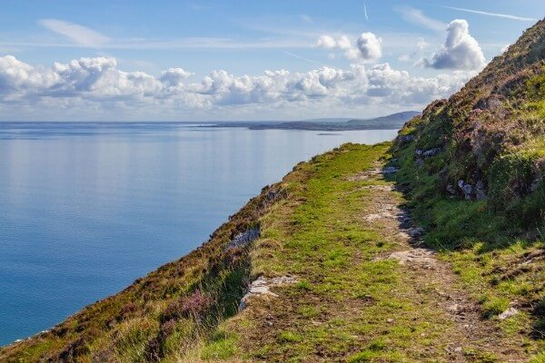 Black Head Loop Walking Guide from Hillwalk Tours